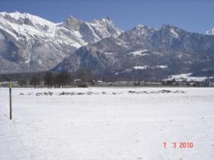 Maienfeld östlich der SBB