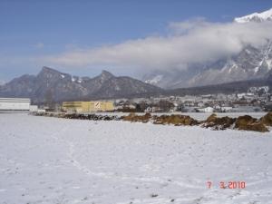 120 m langer Miststock Ende Februar 2010