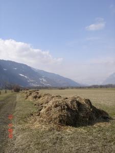 200 m langer Miststock in Malans