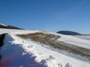 LID_gullen-im-winter