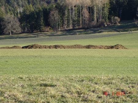 DSC01423_Fuerstenwald_160111