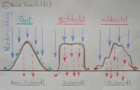Mistlager-Schema nach Bayerische Landesanstalt für Landwirtschaft (LfL), gezeichnet von Heidi