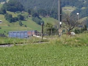DSC02077_Gruesch_neu_klein2