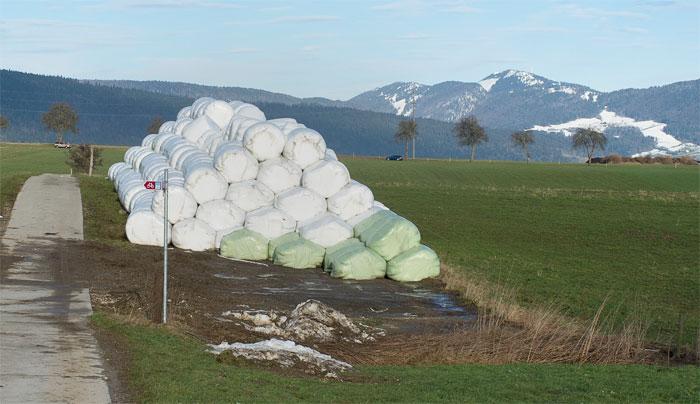 Leserfoto Siloballen in Boudevilliers JU, laufend werden Ballen abtransportiert, zurück bleibt nackte vernässte und verdichtete Erde.