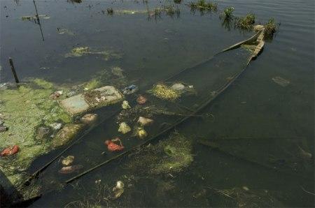 Wir verlagern die Produktion von Lebensmitteln und Gütern in Länder mit weniger strikten Gesetzen und verschmutzen dort die Gewässer.