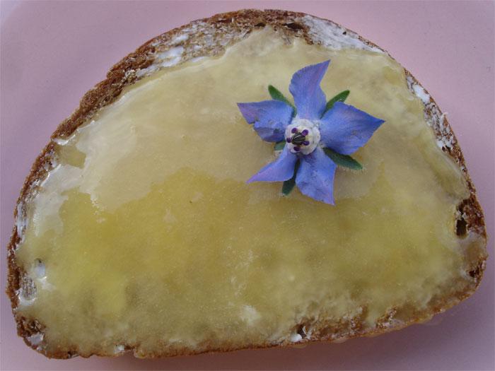 """Zur Stärkung für Heidi gibt's jetzt ein Stück Brot mit Honig, nicht von Blattschneiderbienen zwar, aber vielleicht """"mit Borretsch"""" aus Heidis Garten."""