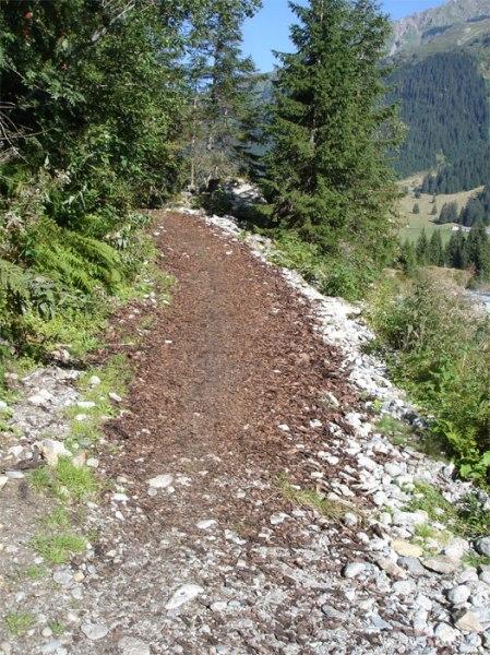"""Eine kleine Felspartie versperrte hier den """"Fahrweg"""", er war nicht durchgängig. Der kleine An- und Abstieg gab den Wandernden das Gefühl von Gebirge. Jetzt ist das Gelände ausgeebnet. Die Welt verändert sich, langsam aber stetig."""