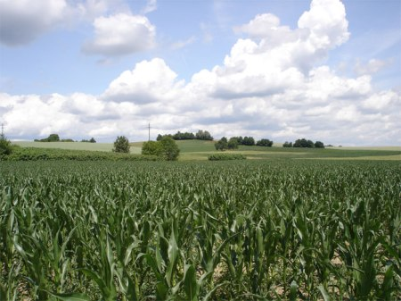 Im Schweizer Talgebiet haben 50 Prozent der landwirtschaftlichen Nutzfläche direkt oder indirekt Gewässeranschluss.
