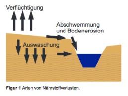 Schema Nährstoffverluste, Quelle Bodenseekonferenz