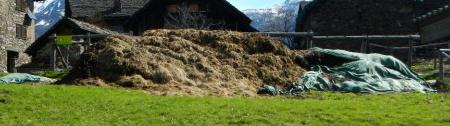"""Dieser Bio-Knospe-Mist (Aufnahme Frühling 2013) wurde inzwischen wegtransportiert und in kleinen Häufchen im Feld deponiert. Der Fotograf meint: """"Auch diese Misthäufchen werden nie verteilt werden."""""""