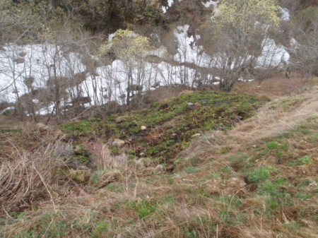... und weiter bergab geht's mit den Abwässern; der Bach nimmt sie auf, fliesst zu Tal und mündet in den Ticino. Winterfoto.