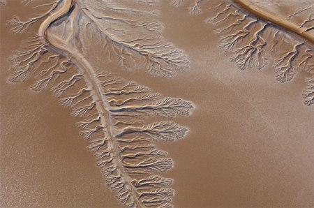Colorado River: Heute eine Wüste; doch Wissenschaftler hoffen, dass das jetzt eingeleitete Wasser schlafende Samen von einheimischen Pflanzen zum Leben erweckt und einen Teil der prächtigen Landschaft auferstehen lässt. Foto: Copyright Pete McBride.