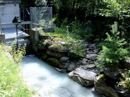 ... doch sie ist für die Laichwanderung der Bodenseeforellen nicht tauglich: zu steil, kein Restwasser. Die alternative Aufstiegsroute direkt vom Rhein in die Landquart steht in den Sternen.