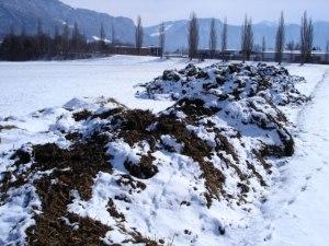 Gefahr der Grundwasserverschmutzung durch monatelange Lagerung von ungedecktem Mist im Feld in Graubünden, und zwar durch die Behörden offiziell toleriert!
