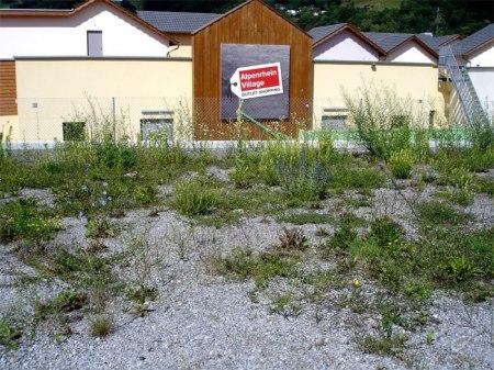 Das Schönste am Designer Outlet in Landquart ist die Ruderalflora dahinter. Foto 2011 als es noch Alpenrhein Village hiess.