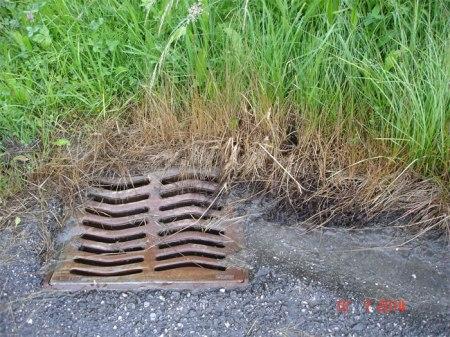 ... eindeutige Spuren von Herbizid an einem Schacht ... Übrigens, es hat doch in letzter Zeit regelmässig geregnet.