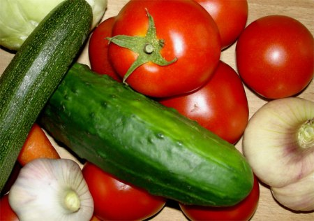 Gemüse ist gesund. Das Ernten im eigenen Pflanzblätz macht Spass.