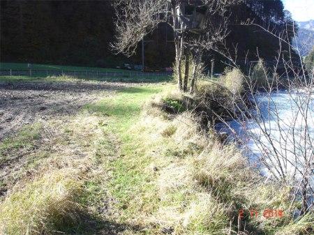Der Pufferstreifen zwischen Bergbach und Maisfeld müsste 6 m breit sein.