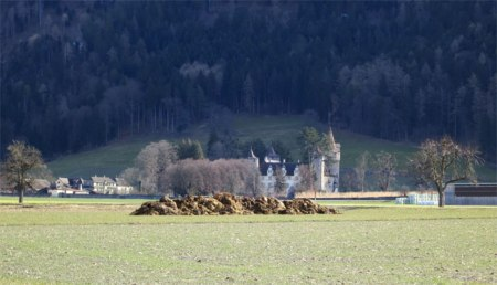 Misthaufen auf Wiese, im Hintergrund Schloss Marchlins GR. Gelten Vorschriften auch für Bündner Bauern?