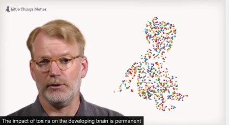Schon extrem kleine Giftmengen können die Entwicklung des Gehirns schädigen, dies mit dauerhaften Folgen.