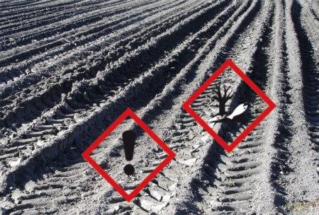 ... Bauern spritzen Pflanzenschutzmittel auf den Boden; diese sickern in den Boden. Was Pestizide im Boden bewirken, das ist ein grosses Rätsel. Erst ein kleiner Teil der Bodenbewohner ist bekannt, noch weniger kennt man die Wirkung auf sie ...