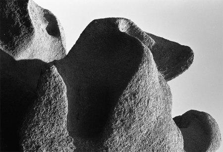 Tausende von Jahren vergehen bis aus Stein Boden wird ... eine dünne Schicht Erde nur, die uns ernährt ...