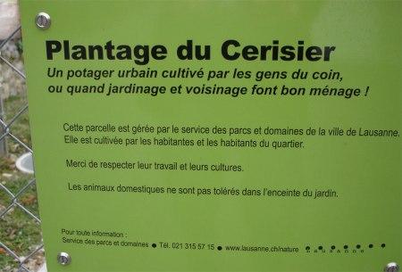 Von der Stadt Lausanne unterstützter Quartiergarten.