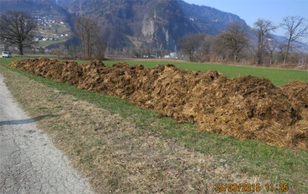 """Jahr für Jahr liegt Mist monatelang ungedeckt am Wanderweg, welcher von Landquart durch die Rohan-Schanze nach Malans führt. Was würde wohl Henri Duc de Rohan dazu sagen, """"der gute Herzog"""", der die Burgundertraube in die Bündner Herrschaft gebracht hatte? https://heidismist.wordpress.com/2010/06/01/rohan-schanze-neu-entdeckt/"""