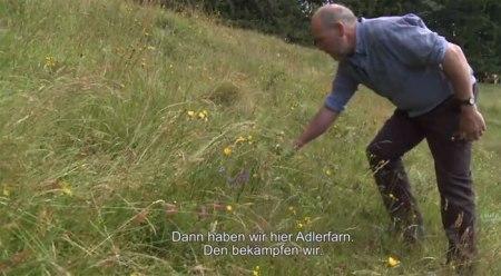 """Daniel Siegenthaler erklärt wie er das Adlerfarn bekämpft. Aus dem Film """"Von Älplern für Älpler"""" - Extensive Bewirtschaftung lohnt sich, Forschungsprogramm AlpFUTUR. Copyright: Patricia Fry."""
