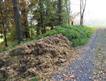 """Mist am Waldweg der Korporation Oberägeri, oberhalb """"Im Gutsch"""", Copyright: Erika."""