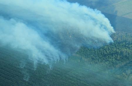 In Indonesien brennen die Wälder! Wo Torfwälder brennen, da verbrennt auch der Boden. Unsere Vorfahren haben Torf als Brennstoff verwendet. Copyright PanEco.