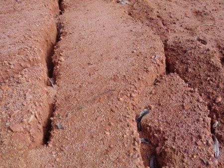 Strassen werden in den Urwald geschlagen, erodierte Erde verschmutzt die Bäche aus welchen die Einheimischen ihr Trinkwasser holen. Hinzu kommen Gewässerverschmutzungen mit Pflanzenschutzmitteln und Dünger.