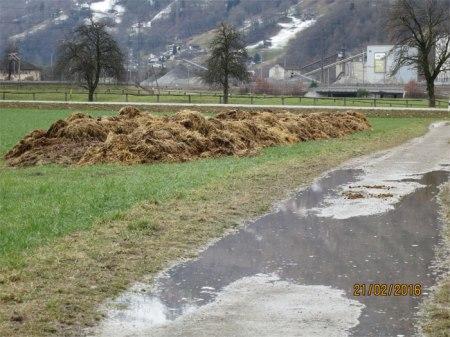 Der Weinwanderweg von Landquart über Malans nach Fläsch führt durch die Rohan-Schanze.