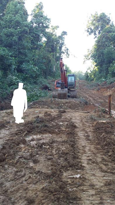 All das Gerede um angeblich nachhaltiges Palmöl ändert nichts an der Tatsache, dass weiterhin hemmungslos Urwald abgeholzt wird. Copyright Astrid Walz.