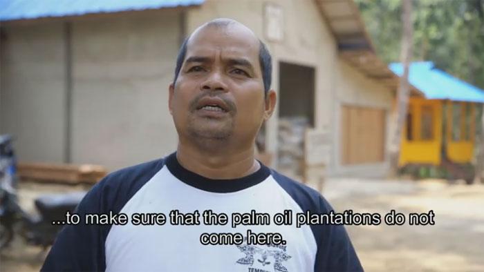 Bild aus dem Video über die Tengkawang-Fabrik, Solutions from the Jungle: The Tengkawang Factory. Copyright: Willie Smits