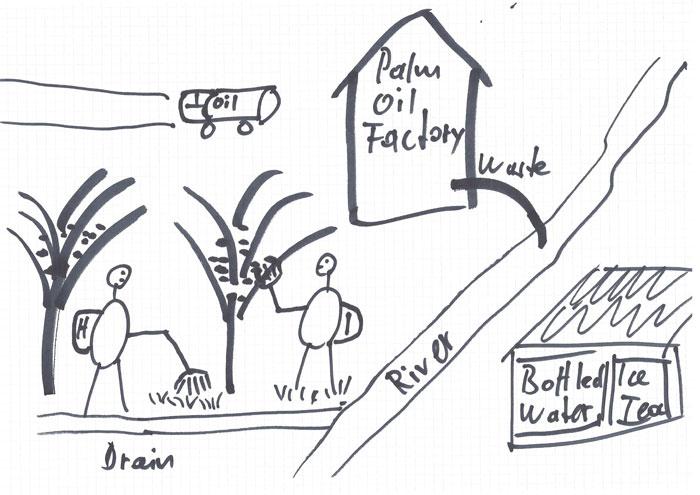 Für den Anbau von Palmöl werden Torfböden drainiert. Das bei der Ölproduktion anfallende Abwasser wird in Bäche geleitet, das der einheimischen Bevölkerung als Trinkwasser dient.