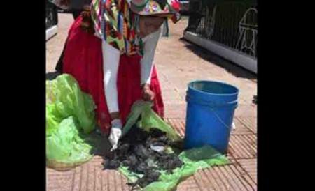 Puno: Piden investigar muerte de ranas y peces en río Coata, Pachamama La voz del sur andino: http://www.pachamamaradio.org/regional/8801-puno-piden-investigar-muerte-de-ranas-y-peces-en-rio-coata