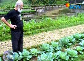 Pater Agatho betrachtet mit kritischem Blick die Gemüsepflanzung. Copyright: Ist.