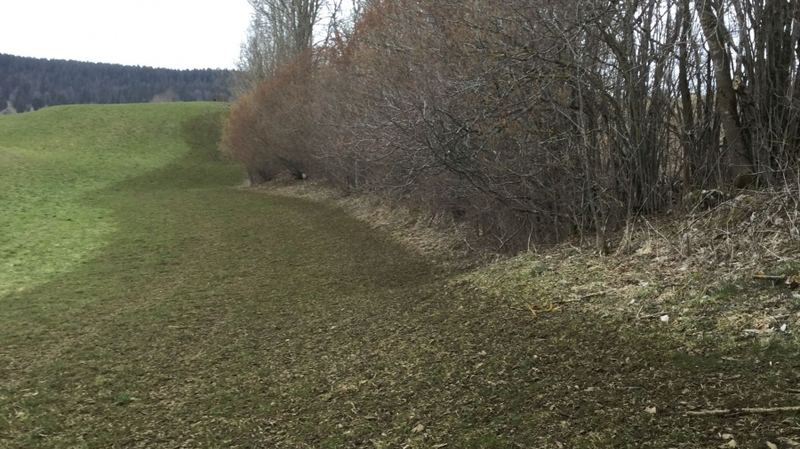 Gülle bis an den Waldrand! Copyright Pro Natura/WWF NE