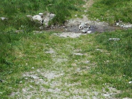 Wieder Herbizid bis zum Wassergraben.