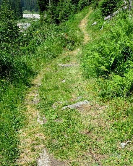 Doch nicht so schnell! Steigen wir von der Alp Garfiun auf zur Alp Spärra ...