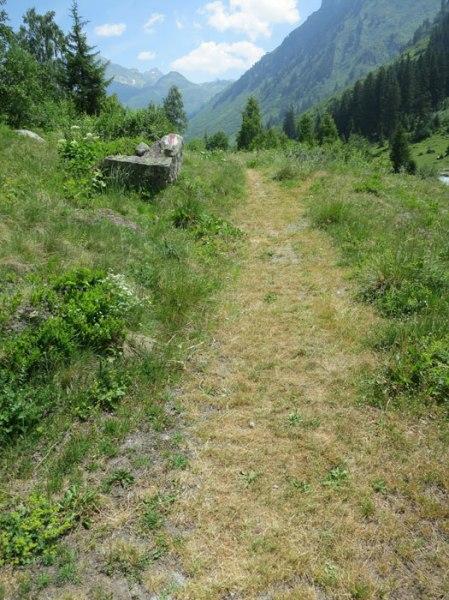 ... der Weg wird breiter, auch ohne Wegmarke eindeutig signalisiert ...