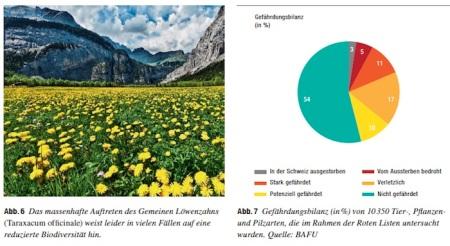 """Quelle: <a href=""""https://www.bafu.admin.ch/bafu/de/home/themen/biodiversitaet/publikationen-studien/publikationen/biodiversitaet-schweiz-zustand-entwicklung.html"""" target=""""_blank"""" rel=""""noopener"""">Biodiversität in der Schweiz: Zustand und Entwicklung</a>, BAFU 2017, Seite 14. Grafik zum Vergrössern anklicken."""