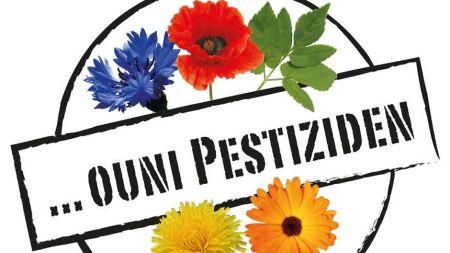 In Luxemburg ist der öffentliche Raum seit 1.1.16 aufgrund einer gesetzlichen Regelung pestizidfrei. Foto: Ëmweltberodung Lëtzebuerg