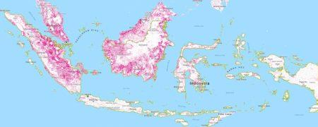 """Abholzung (Flächen in Pink) in Indonesien von 2001 bis 2016. Copyright: <a href=""""http://www.globalforestwatch.org/"""" target=""""_blank"""" rel=""""noopener"""">Global Forest Watch</a>. Karte vergrössern durch Klick auf Bild."""