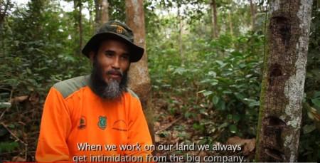 """""""Wenn wir unser Land bearbeiten, dann werden wir dauernd von den grossen Gesellschaften eingeschüchtert."""" Copyright: Greenpeace Indonesia."""