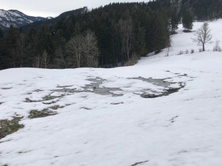 Der Osterhase hat auf dem Chatzenstrick gesehen, dass der Misthaufen weg ist; er wurde mit grossen Maschinen aufgeladen. Spuren sind durch den Schnee zu sehen. Copyright: Osterhase.
