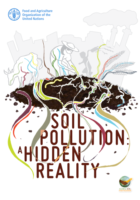 Bericht der FAO über den Zustand des Bodens. Rodríguez-Eugenio, N., McLaughlin, M. and Pennock, D. 2018. Soil Pollution: a hidden reality. Rome, FAO. 142 pp.