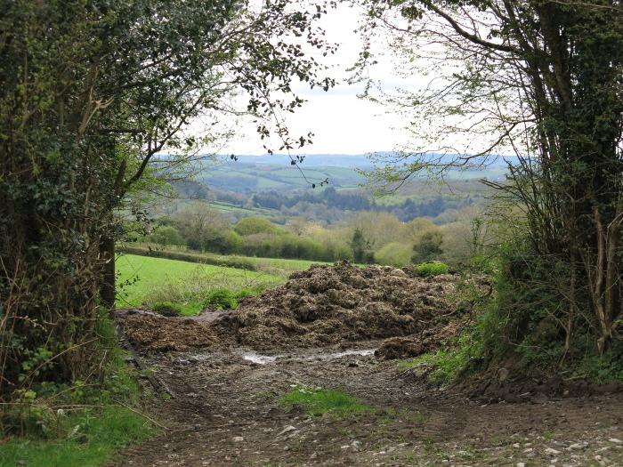 """Mistblick"" Dartmoor, Südengland. Copyright: Arno."