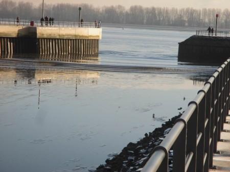 Hamburger Hafen. Der Elbe geht es dreckig. Copyright: Ludwig Tent